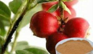 Camu Camu ORGANIC RAW powder 10 oz. Detox  healthy skin heart eyes Lots