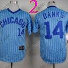 Chicago Cubs Jersey 14 Ernie Banks Blue Strips 1988 Baseball Jersey
