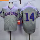 Chicago Cubs #14 Ernie Banks 2015 Baseball Jersey Authentic Stitched