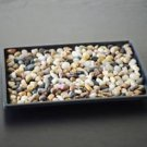 "Bonsai Humidity Tray 6"" x 9"" with river rocks by Eastern Leaf"