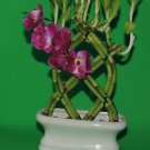 Lucky Bamboo 8 stalks OF 10-11 in a Fence w/ 4 in a vase (FREE SHIPPING)