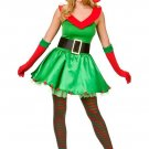 Christmas Elf Santa's Costume