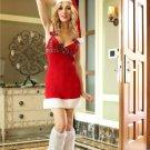 Chic Santa Alluring Costume
