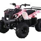 110CC ATA125D ATV