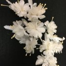 Beautiful White Silk Flowers with Pearl Accents - 1 Dozen Flowers - 12 Flowers