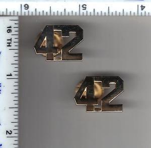 42nd Precinct Collar Brass (Bronx) as per the NYPD-Patrol-Guide