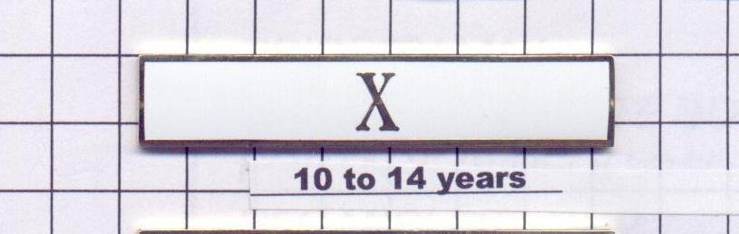 Sheriff's Department 10-14 Year Longevity Bar (X) Citation Bar pin back - White