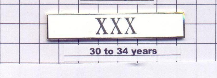 Police Department 30-34 Year Longevity Bar (XXX) Citation Bar (pin back - White)