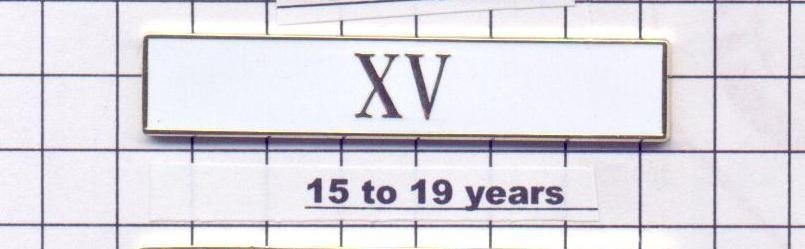 Sheriff's Department 15-19 Year Longevity Bar (XV) Citation Bar pin back - White