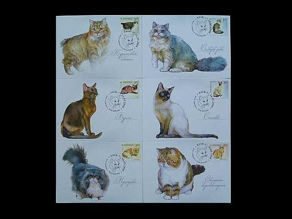 UKRAINE SET OF SIX CATS ON STAMPS MAXIMUM POST CARDS 2008