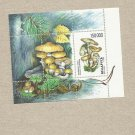 BELARUS MUSHROOMS UNUSED STAMP BLOC 1999