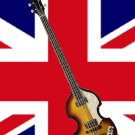 HOFNER CONTEMPORARY 500/1 VIOLIN BASS - DARK BROWN SUNBURST W/CASE