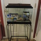 10 Gallon Aquarium w/stand and accessories!  LOCAL PICK UP ONLY