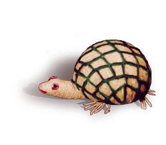 Coir Tortoise