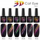 Magnetic Starry Sky Cat Eye Factory Price Gel CANNI New Product Fashion UV & LED