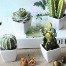 Mini Artificial Potted Succulent Fake Cactus Lotus Plant Bonsai Home Table Decor