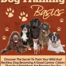 Dog training Basics  PDF E book