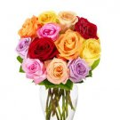 From You Flowers - One Dozen Rainbow Roses (Free Vase is Included)