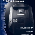 Evinrude E-TEC 200 225 250 HP Outboard Motor Service Manual CD