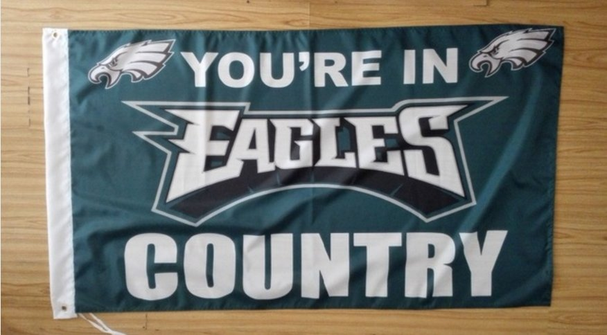 Philadelphia Eagles you're in country Flag 3ft x 5ft Polyester Banner 90x150cm