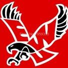 Eastern Washington Eagles Flag 3ftx5ft Banner 100D Polyester NHL Flag style 1