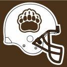 Brown Bears Helmet Flag 3ftx5ft Banner 100D Polyester NCAA Flag style 3
