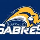 Buffalo Sabres Flag 3FTx5 FT 150X90CM Banner 100D Polyester NHL flag style 1