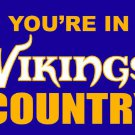 Minnesota Vikings you're in country Flag 3ft x 5ft Polyester Banner 90x150cm