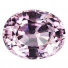 2.8 Ct. Natural Intense Pink Oval Cut Spinel Loose Gemstone With GLC Certify