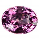 3.42 Ct. Natural Intense Pink Spinel Loose Gemstone With GLC Certify