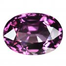 3.03 Ct. Beautiful Natural Hot Purple Spinel Loose Gemstone With GLC Certify