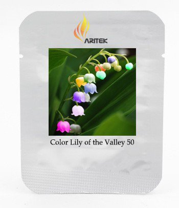 Rare Colorful Lily of the Valley Convallaria Majalis Perennial Flower Seeds