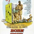 Born Free (1966) - Bill Travers DVD