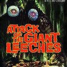 Attack Of The Giant Leeches (1959) - Ken Clark  DVD