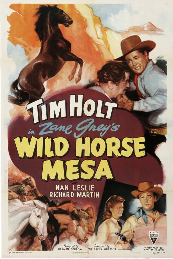 Wild Horse Mesa (1947) - Tim Holt  DVD