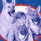 Rusty : The Son Of Rusty (1947) - Ted Donaldson  DVD