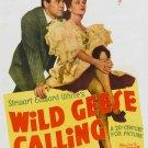 Wild Geese Calling (1941) - Henry Fonda  DVD