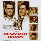 The Desperate Hours (1955) - Humphrey Bogart  DVD