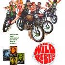 The Wild Rebels (1967) - Steve Alaimo  DVD