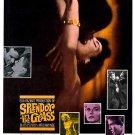 Splendor In The Grass (1961) - Warren Beatty  DVD