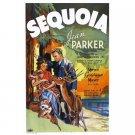 Sequoia (1934) - Jean Parker  DVD