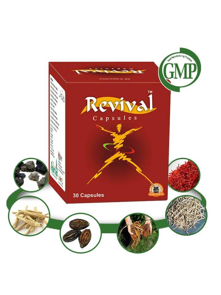 Herbal Energy Booster Pills - 60 Capsules