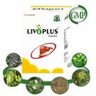 Organic Natural Liver Support Supplements - 200 Capsules