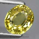0.65 cts Lemon Yellow SAPPHIRE Oval Facet-cut Natural Gemstone Sri Lanka Ceylon