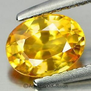 0.53 cts Golden Yellow SAPPHIRE Oval Facet-cut Natural Gemstone Sri Lanka Ceylon
