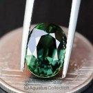 0.50 cts Green SAPPHIRE Oval Facet-cut Natural Gemstone Sri Lanka Ceylon