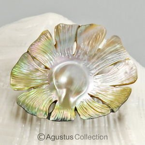 MABE Blister PEARL in SHELL Lustrous Rainbow Iridescent Carving Sumbawa 11.10 g