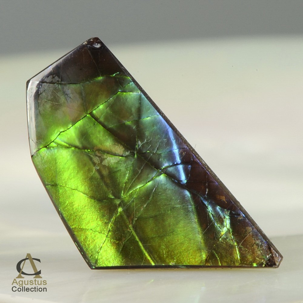 AMMOLITE Ammonite Rare Gem Stone from Canada 6.5 ct / 23.69 x 12.39 x 2.45 mm