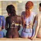 Pink Floyd Door Music Poster