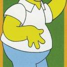 The Simpsons Door Poster